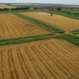 Правительство утвердило госпрограмму эффективного вовлечения в оборот сельхозземель и развития мелиоративного комплекса