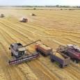 О развитии сельского хозяйства, рынков сельскохозяйственной продукции, сырья и продовольствия и продовольственной безопасности