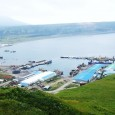 РАН и Росрыболовство намерены развивать морскую фармакологию