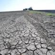 Засуха угрожает жизни 7 миллионов фермеров в Афганистане.