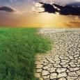 Глобальное потепление снизило темпы роста эффективности сельского хозяйства